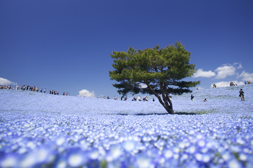The Most Surreal landscapes on Earth | Most beautiful ...