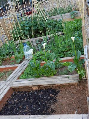 horta de porta