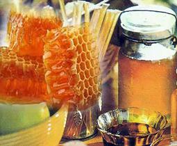 kandungan madu dan manfaatnya