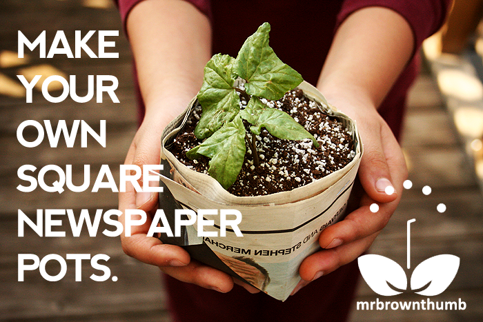 Make your own square newspaper seed starting pots