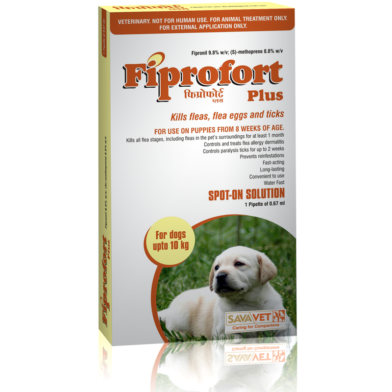 Fiprofort Plus Small Dog