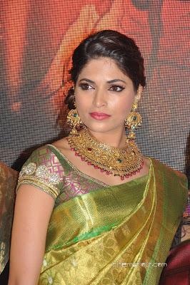 wedding designer saree blouse