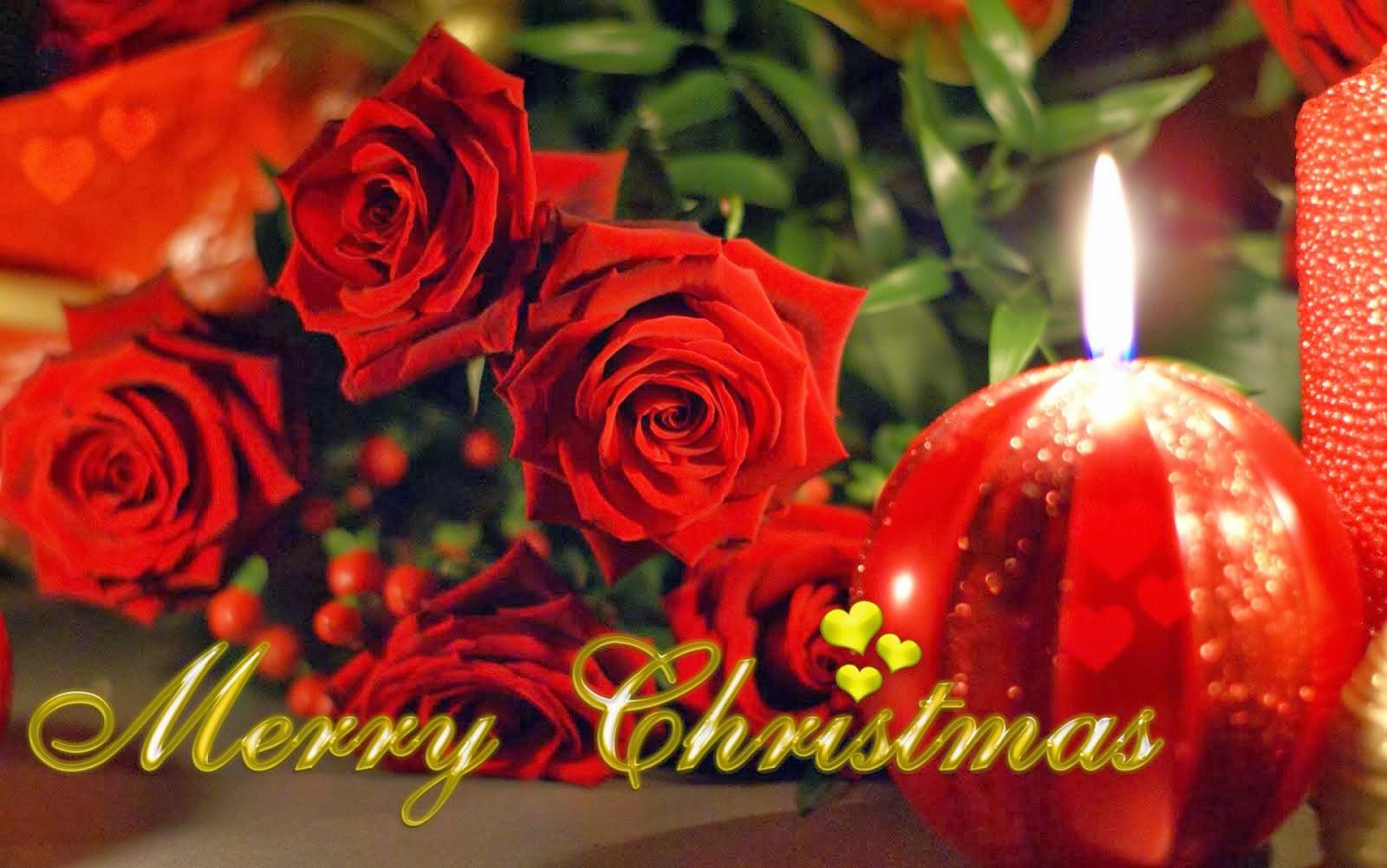Merry Christmas ! ! !