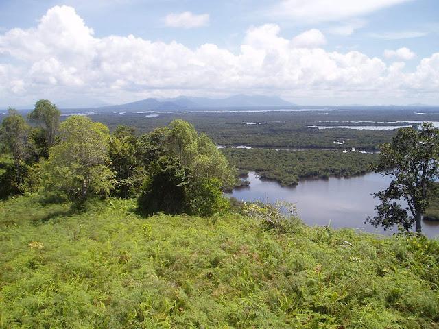 Taman Wisata Danau Sentarum Kalimantan 2