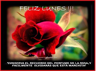 feliz lunes rosas rojas