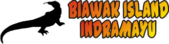 Biawak Island Indramayu