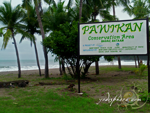 Beach area as Pawikan Conservation Area in Bagac Bataan