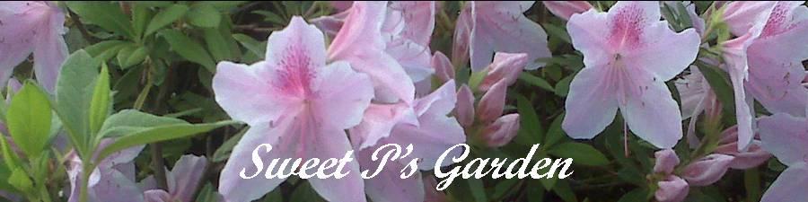 sweetpea's garden