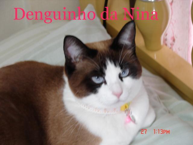 ♥   Denguinho da Nina   ♥