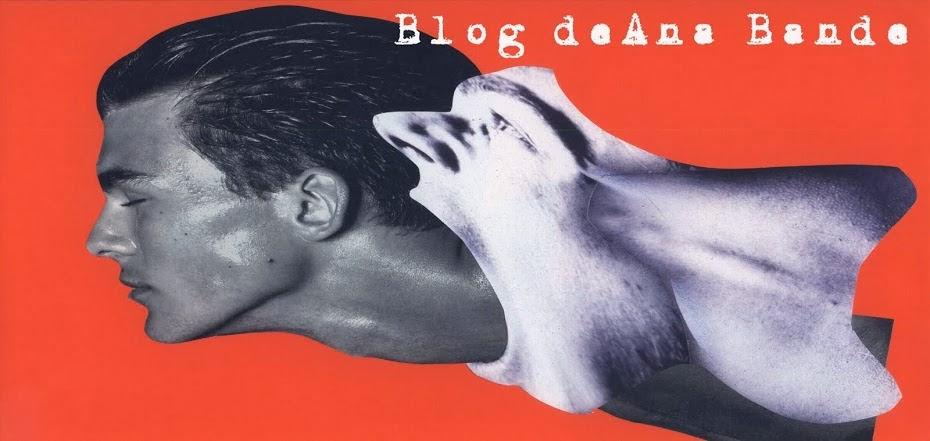 Blog de Ana B. Bande