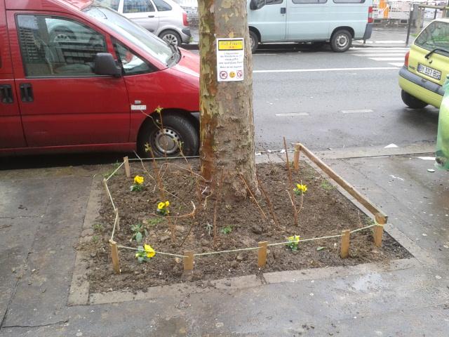 Jardin santerre 107 rue de reuilly paris 12 me un framboisier dans l 39 arbre et une salade dans - Ou planter un framboisier ...