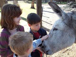 Even the donkey gets a treat!