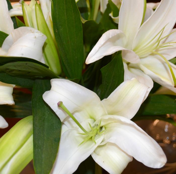 Football, White Lillies, Flowers, Decor