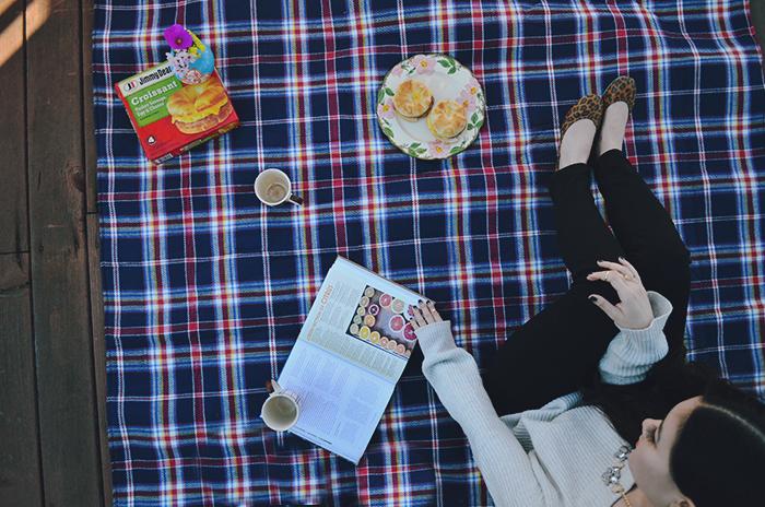 san francisco picnic