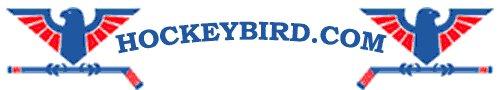 Hockeybird