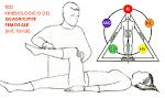 Esempio di test muscolare