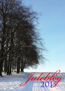 Jeg blogger indtil jul