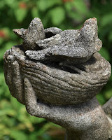 image of a hand holding a bird's nest with two birds