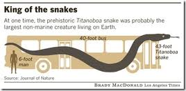 Propaganda The Planet 39 S Largest Prehistoric Snake Was 45