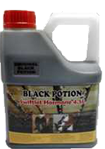Black Potion