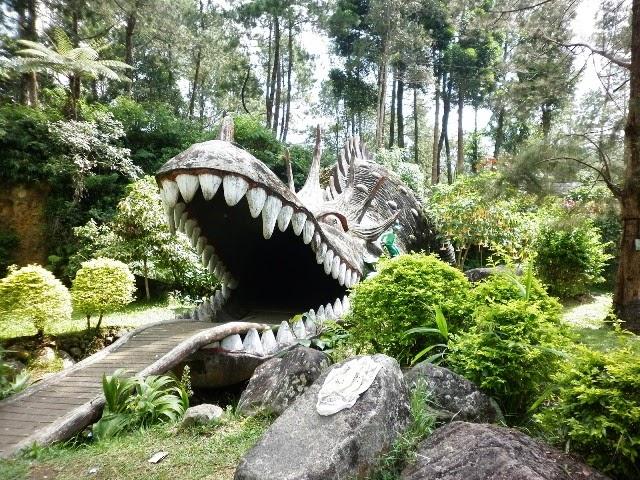 Mandalawangi Cibodas Taman Komodo