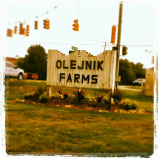 Olejnik Farms Sign