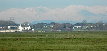 Aldcliffe Marsh