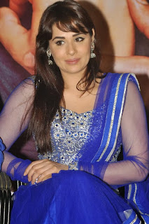 Actress Mandy Takhar Pictures in Salwar Kameez at Biriyani Movie Audio Launch  0110