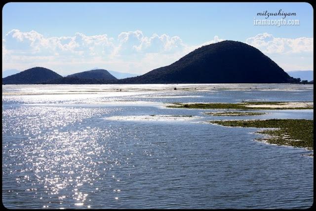 Brillo en la laguna de Cuitzeo Iramuco Guanajuato
