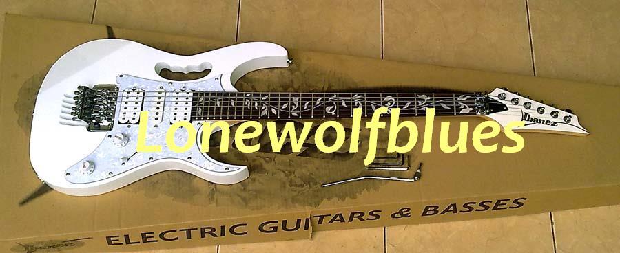LonewolfBlues Music Station Gitar Dan Spul