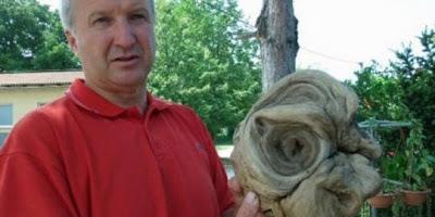 Kepala alien ditemukan di pemakaman di Kroasia