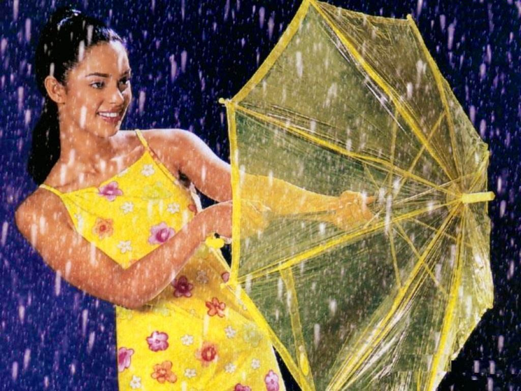 Mallika Sherawat HD rain drop wallpapers