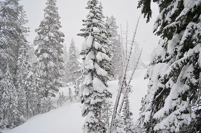 snow tahoe