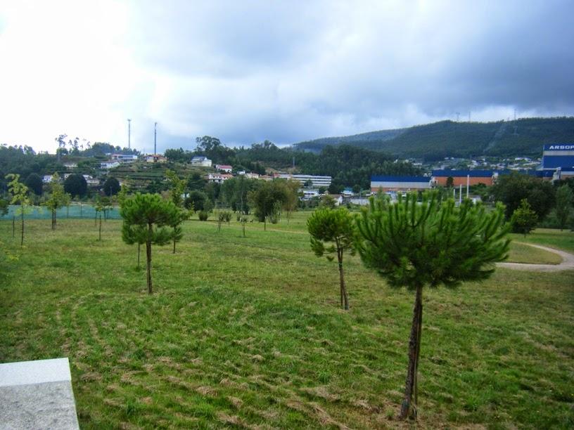 Árvores do parque de vale de Cambra