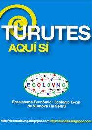 Projecte TURUTA