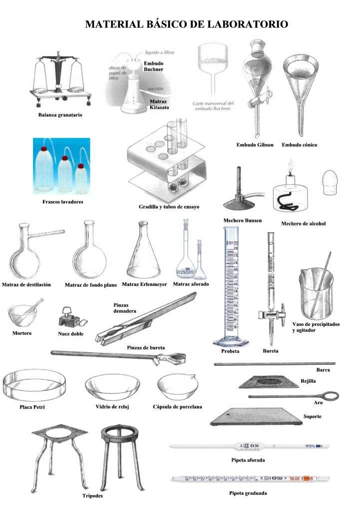 Material b sico de laboratorio de qu mica laboratorio de for Aparatos de gimnasio usados