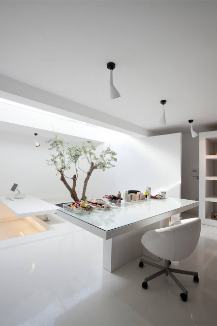 Picture of a small modern white table in the room with one small tree