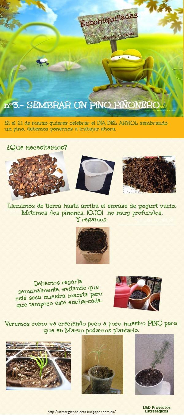 #Ecochiquillada nº 3