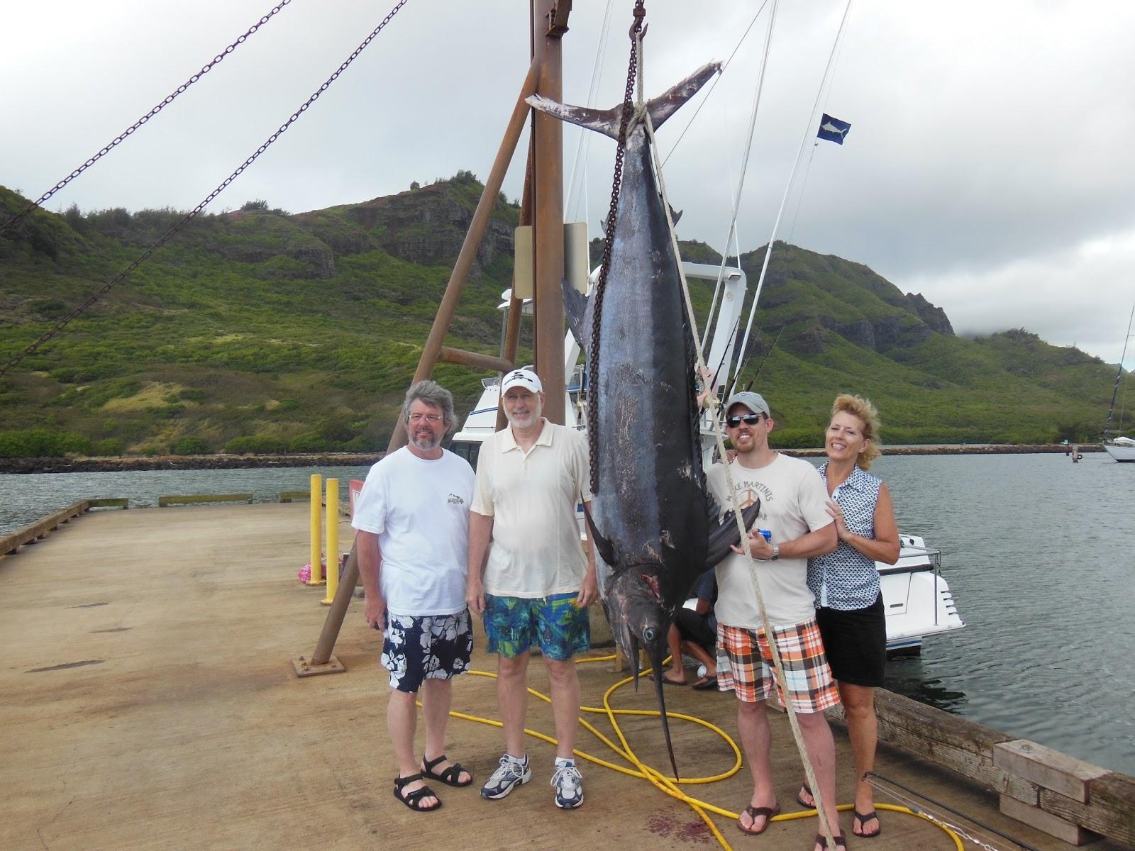 C lure fishing chaters kauai hawaii 310 pound blue marlin for Kauai fishing report