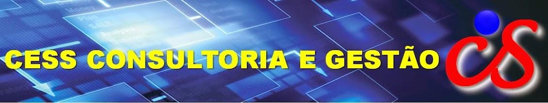 CESS CONSULTORIA E GESTÃO