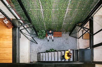 Vertical Garden Di Tengah Ruangan Kantor