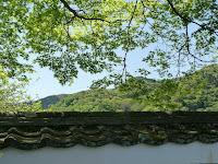 新緑を求めて嵐山の宝厳院に行った