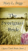 Chance Creek Brides, Book 2