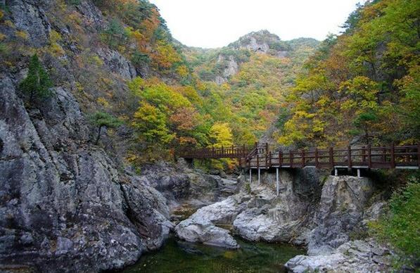 10 tempat wisata alam di korea