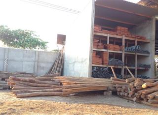 Trụ Nho Trụ Táo là mặt hàng được người dân Phan Rang Ninh Thuận ưa chuộn vì tỉnh mình chuyên trồng 2 lại cây này bạn nào cần thì ghé qua VLXD Phúc Nhơn Xem Nhé