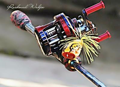 reel mancing gabus