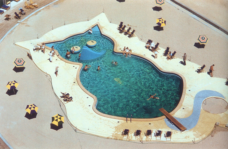 Crazy shape swimming pools modern design by for Swimming pool shapes