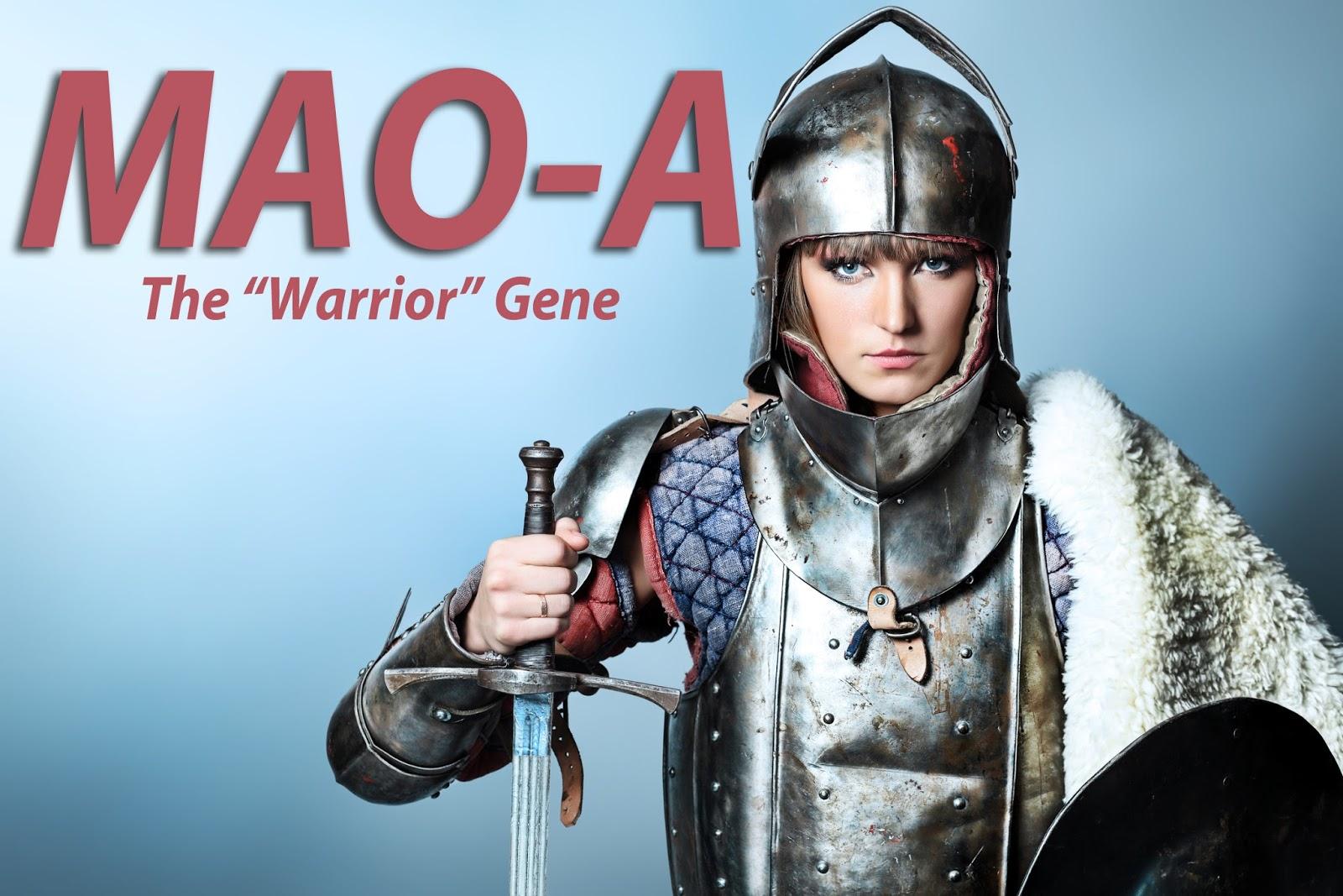 Medieval women warrior porn pictures