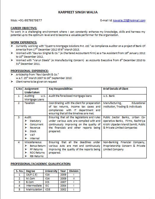 pliance Auditor Resume