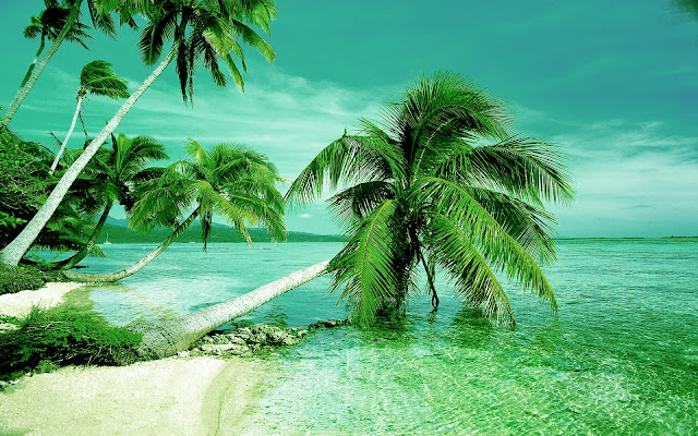 Top 37 Most Beautiful And Dashing Beaches Wallpapers In Hd Tops Hd